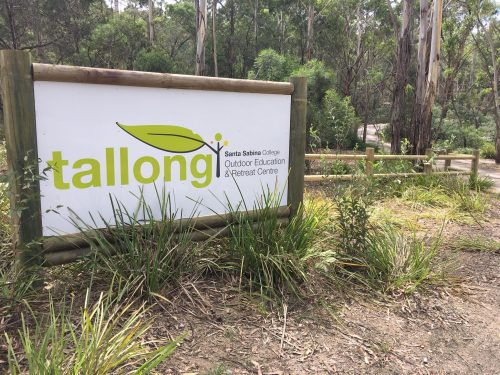 Tallong news and updates featured image