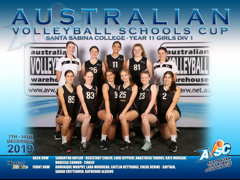 Australia's top volleyballers (again)