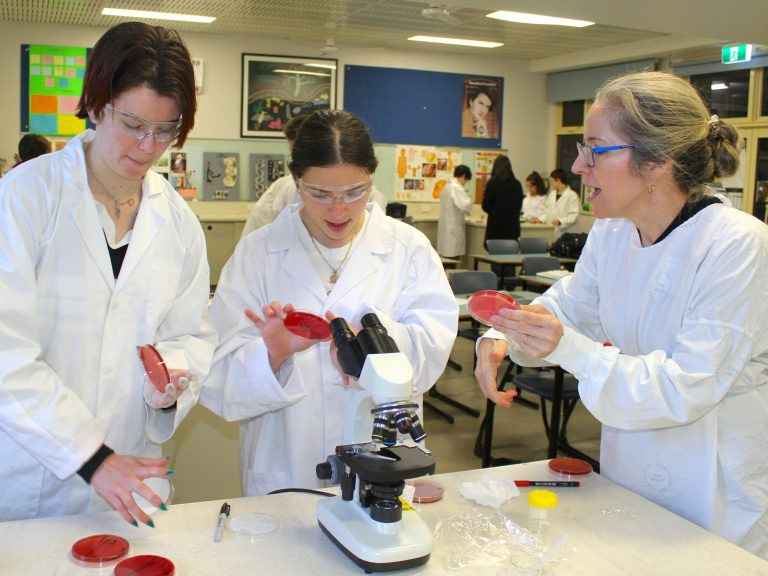 A day in the life of a pathology sample for COVID-19 testing